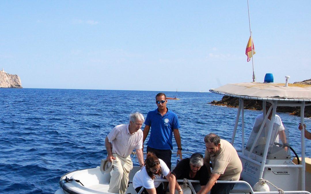 """""""Meli"""" vuelve a nadar en la inmensidad del mar balear"""